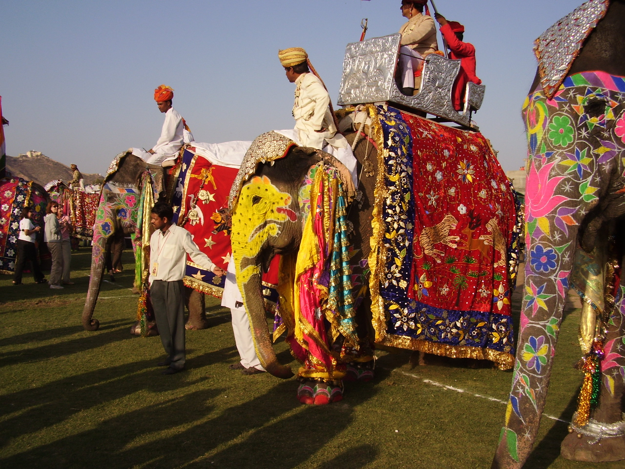 Festival degli elefanti