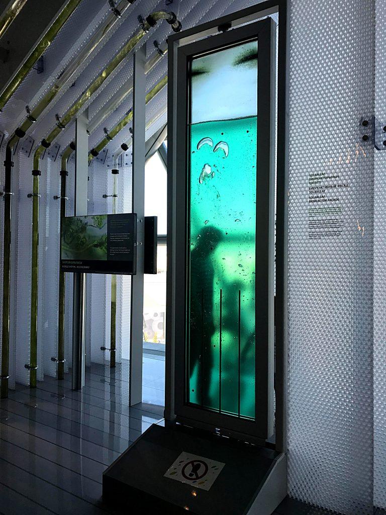 lamina solare per bioreattore
