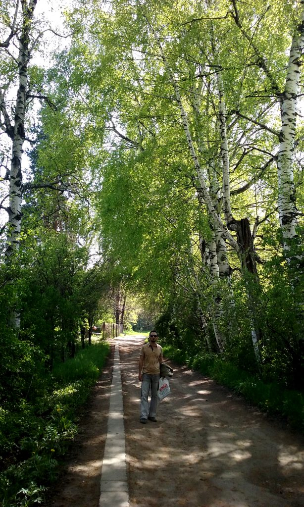 Viale alberato nel Giardino botanico