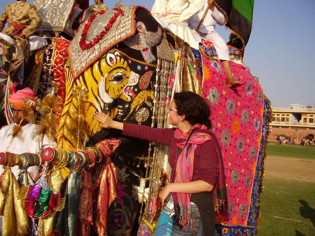 Elefante con tigre. Forte di Amber e Festival degli elefanti, Jaipur