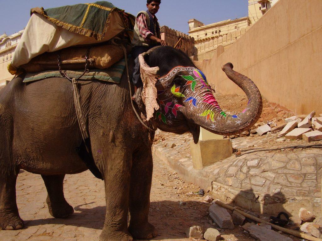 Salita verso il Forte. Forte di Amber e Festival degli elefanti